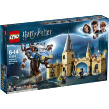 LEGO® Harry Potter - Roxforti Fúriafűz (75953)